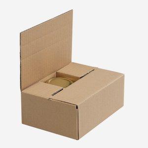 Packaging carton for 6 x Fac-192, Vie-212