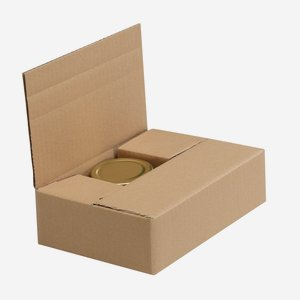 Packaging carton for 6 x Fac-106, Sec-106