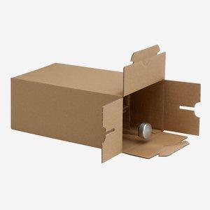 Packaging carton for 6 bottles Beg-200