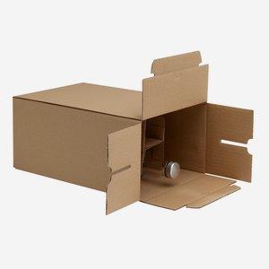 Packaging carton for 6 bottles Beg-500