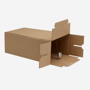 Packaging carton for 6 bottles Pla-500