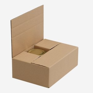 Packaging cardboard box for 6 x Fac-212
