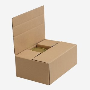 Packaging cardboard box for 6 x Zyl-314