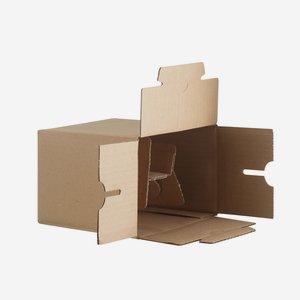 Packaging carton for 6 bottles Viv-100GPI