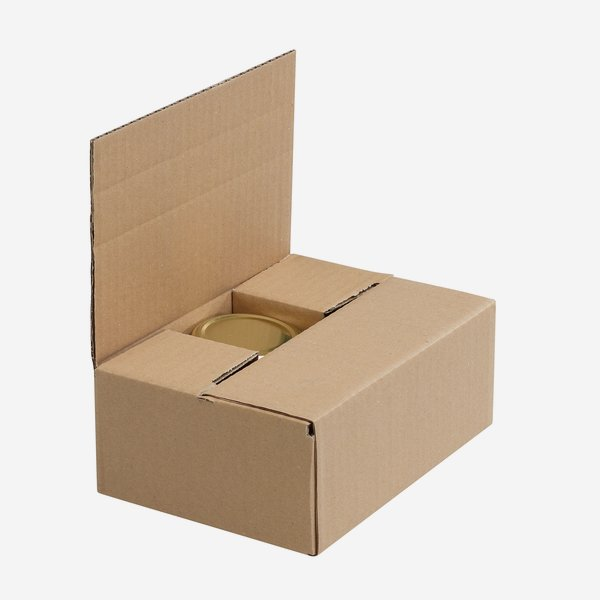 Packaging carton for  6x STUR-229